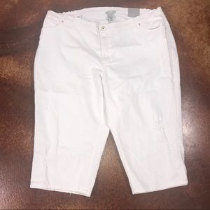 NWT Catherine's 26W white distressed denim capris